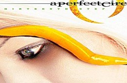 A Perfect Circle, album 2003 13th step