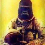 gorilla spaziale