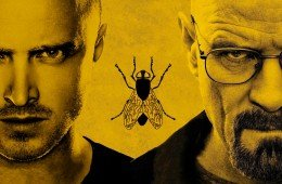 Breaking Bad miglior episodio Fly