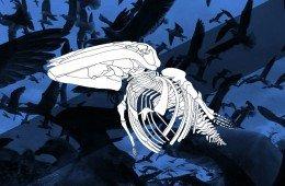 film leviathan